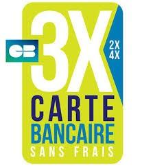 Payé en 4X par carte bancaire